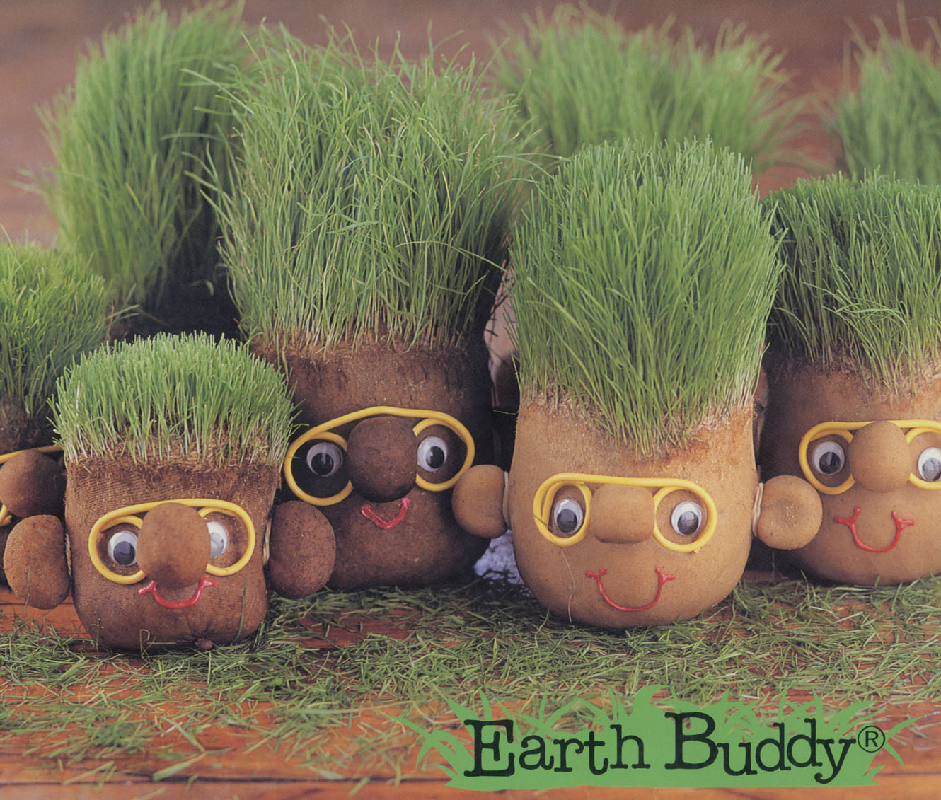 earth buddy Ready, set, grow with the earth buddies is sold as a package that includes an instruction book and two earth buddies the earth buddies are round balls made from.