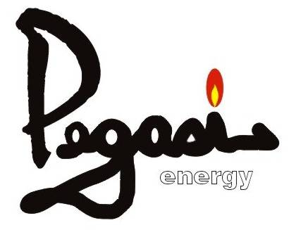 Pegasi Energy Resources Corporation Logo