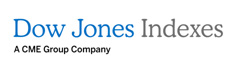 Dow Jones Indexes Logo