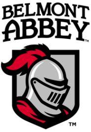 Image result for belmont abbey baseball logo